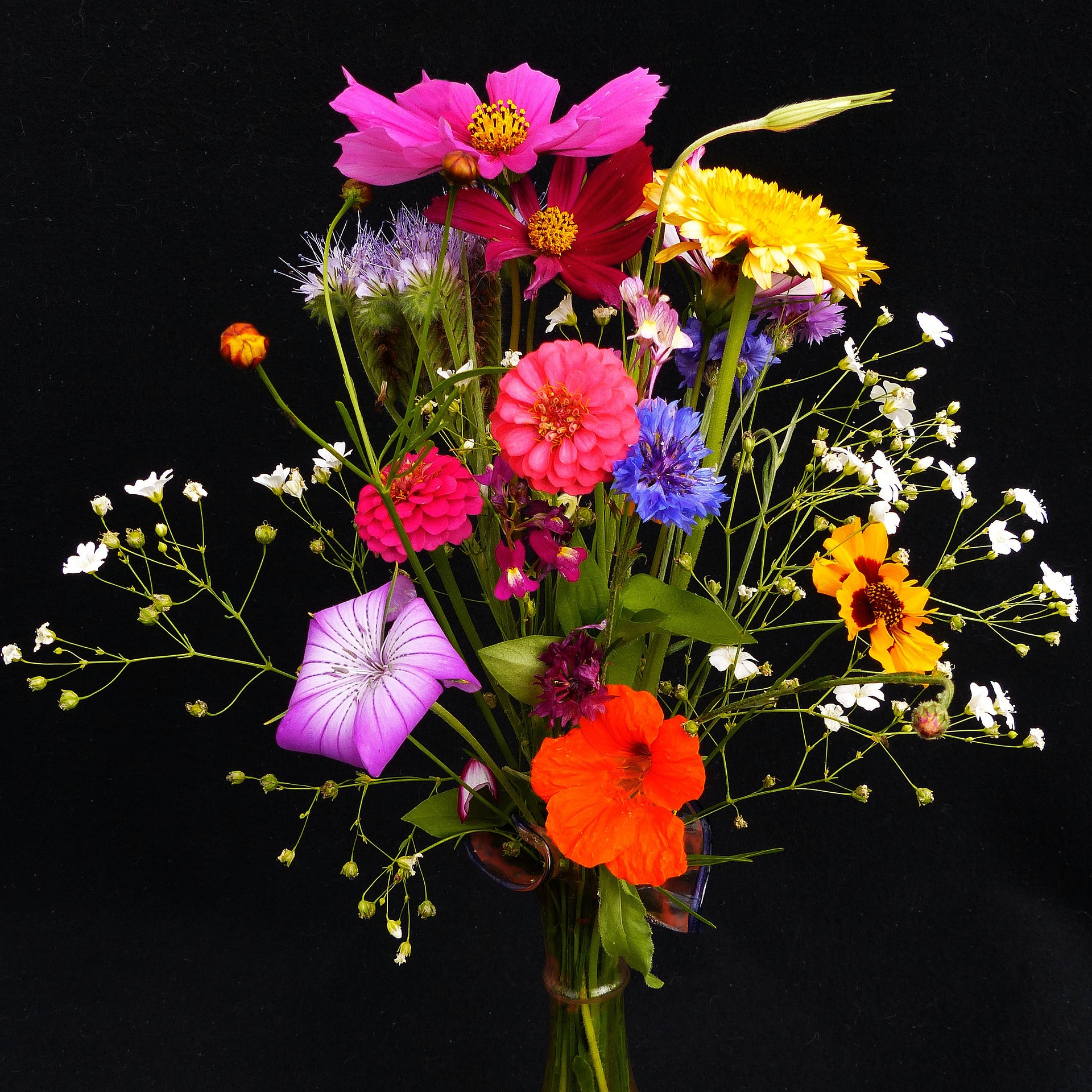 birthday-bouquet-1559029_1920